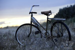 Alexis-Moser-transport-through-time-Old-Bike-in-Sage