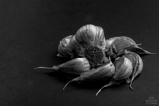 Alexis-Moser-Onion-and-Garlic-3-flower