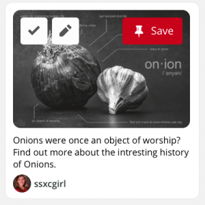 Alexis-Moser-onion-infographic-mock-up
