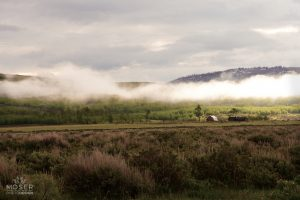 Alexis-Moser-misty-mountains-Farm-Home-in-the-Distance