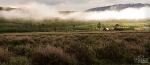 Alexis-Moser-misty-mountains-Farm-Home-in-the-Distance-SLIDER