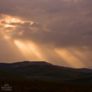 Alexis-Moser-misty-mountains-Sunlight-Over-the-Hills