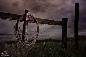 Alexis-Moser-rocky-mountain-wildlife-photography-Rope-On-A-Fence-In-Stormy-Weather