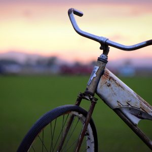 Alexis-Moser_transport-through-time-old-Bike-Handle-bars-Sunset-Field