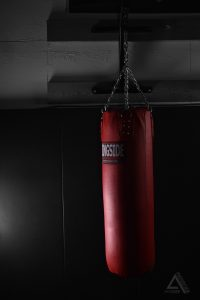 Alexis-Moser-Red-Punching-Bag